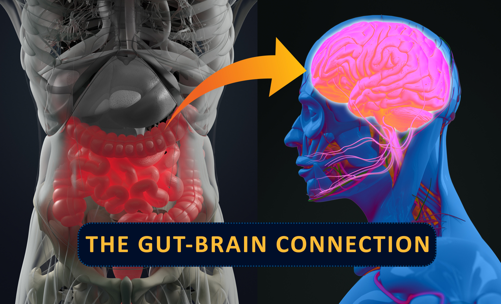 The Gut Brain Axis, Mental Health and IBS